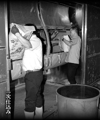 抜群酒造 一次発酵