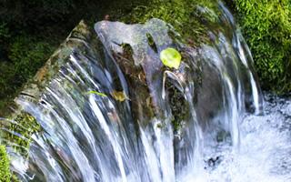 人吉球磨の水