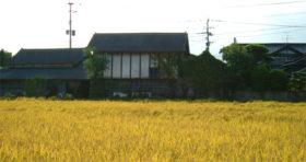 松本酒造場