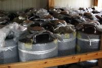 松下醸造場 長期貯蔵用の甕(かめ)