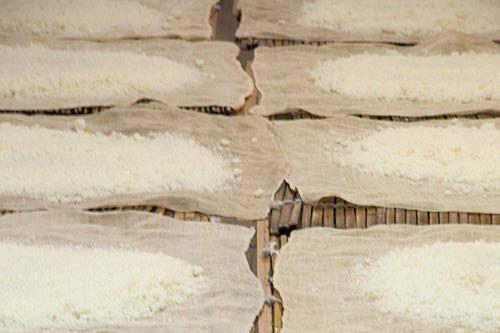 佐々木酒造 仕込み風景