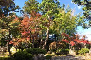 金升酒造 秋の庭園風景