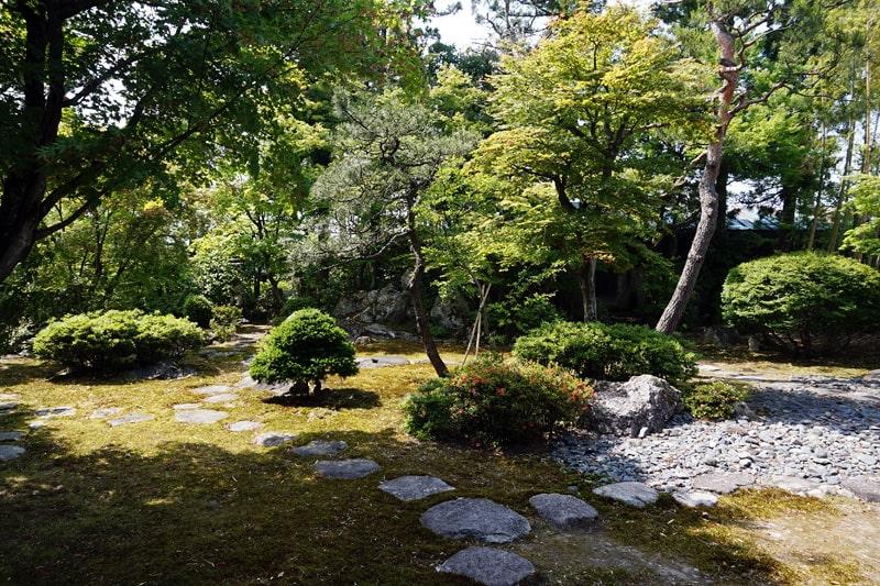 金升酒造 夏の庭園風景