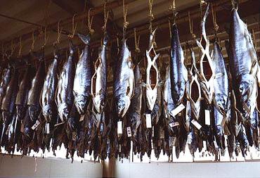 塩引鮭の逆さづり
