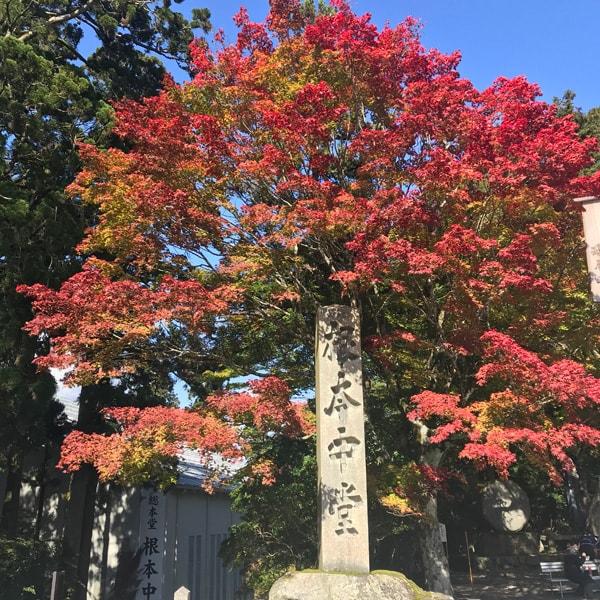 比叡山延暦寺 寺社内 紅葉風景
